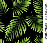palm. pattern of fresh green... | Shutterstock .eps vector #1115567936