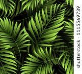 palm. pattern of fresh green... | Shutterstock .eps vector #1115569739