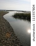 Tolomato River Marsh