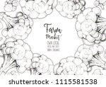 broccoli vector illustration....   Shutterstock .eps vector #1115581538
