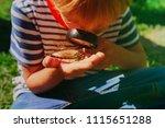 kids learning   little boy... | Shutterstock . vector #1115651288