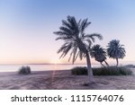 beautiful summer landscape with ...   Shutterstock . vector #1115764076