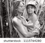 black and white portrait of... | Shutterstock . vector #1115764280