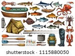 fishing equipment  fish and... | Shutterstock .eps vector #1115880050
