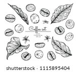 sketch floral botany collection.... | Shutterstock .eps vector #1115895404