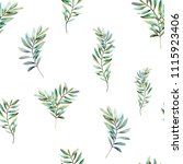 greenery seamless pattern.... | Shutterstock . vector #1115923406