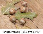 Acorn Autumn Background Oak...