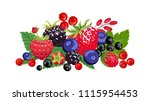 banner with vector forest... | Shutterstock .eps vector #1115954453