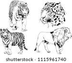 vector drawings sketches... | Shutterstock .eps vector #1115961740