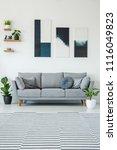 posters above grey settee in... | Shutterstock . vector #1116049823
