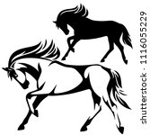 running horse side view black... | Shutterstock .eps vector #1116055229