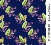 deep background with berries in ... | Shutterstock . vector #1116084320