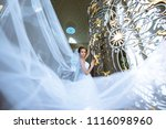 beauty bride in bridal gown... | Shutterstock . vector #1116098960