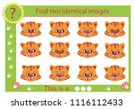 find two identical images with... | Shutterstock .eps vector #1116112433
