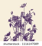 floral background with black...   Shutterstock .eps vector #1116147089