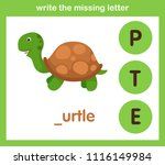 write the missing letter... | Shutterstock .eps vector #1116149984