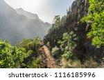 mountain footpath among green... | Shutterstock . vector #1116185996