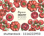 tomatoes hand drawn... | Shutterstock .eps vector #1116222953