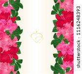 floral border vertical seamless ... | Shutterstock .eps vector #1116248393