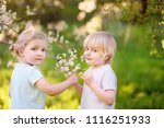 charming toddler girl and... | Shutterstock . vector #1116251933