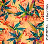 tropical print design | Shutterstock . vector #1116279509