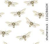 vector illustration. cicadas .... | Shutterstock .eps vector #1116286634