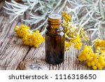 a bottle of essential oil with... | Shutterstock . vector #1116318650