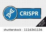 crispr dna button   blue vector ...