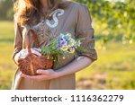 midsummer in latvia ... | Shutterstock . vector #1116362279