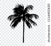 palm tree silhouette  isolated... | Shutterstock .eps vector #1116402650