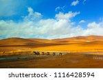 qinghai tibet plateau scenery... | Shutterstock . vector #1116428594