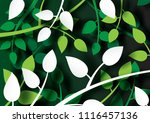 tropical green leaves of plants ... | Shutterstock .eps vector #1116457136