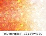 autumn leaves fall japanese... | Shutterstock .eps vector #1116494330