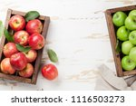 ripe green and red apples in... | Shutterstock . vector #1116503273