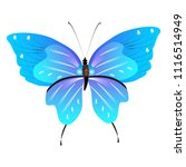 beautiful butterflies  blue... | Shutterstock .eps vector #1116514949