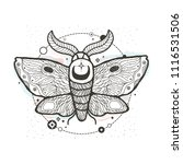 sketch graphic illustration... | Shutterstock .eps vector #1116531506