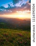 amazing summer scene  fantastic ...   Shutterstock . vector #1116590504