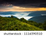 awesome foggy  summer image ...   Shutterstock . vector #1116590510