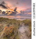 sunset view from dune over... | Shutterstock . vector #1116599483