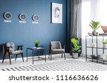 two grey armchairs  metal rack...   Shutterstock . vector #1116636626