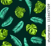 vector monstera and palm leaves.... | Shutterstock .eps vector #1116637109