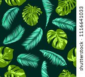 vector monstera and palm leaves.... | Shutterstock .eps vector #1116641033