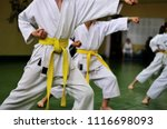 kids of karate. training and... | Shutterstock . vector #1116698093