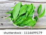 fresh baby spinach in a bowl ...   Shutterstock . vector #1116699179