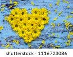 golden daisy flowers in heart...   Shutterstock . vector #1116723086