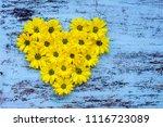 golden daisy flowers in heart... | Shutterstock . vector #1116723089