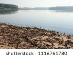 rest on the forest lake. view... | Shutterstock . vector #1116761780