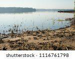rest on the forest lake. view... | Shutterstock . vector #1116761798