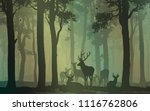 natural background with forest... | Shutterstock .eps vector #1116762806