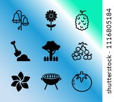 vector icon set about gardening ... | Shutterstock .eps vector #1116805184